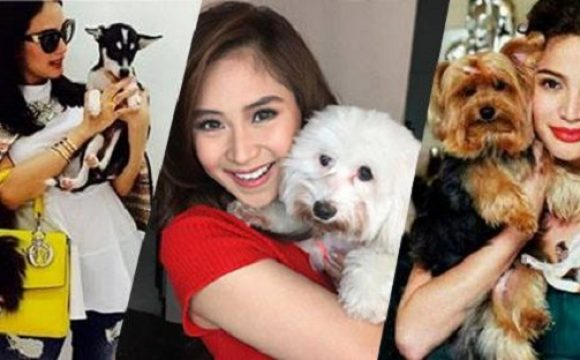 Sarah G, Anne, Nadine and other celebrities and their furry friends