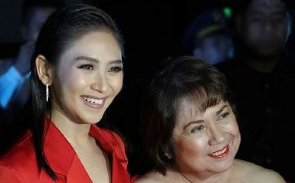 Reasons why you should watch Miss Granny with your Mother/Lola today
